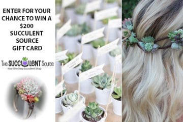 Wedding Giveaway from The Succulent Source
