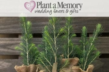 Wedding Giveaway from Plant a Memory