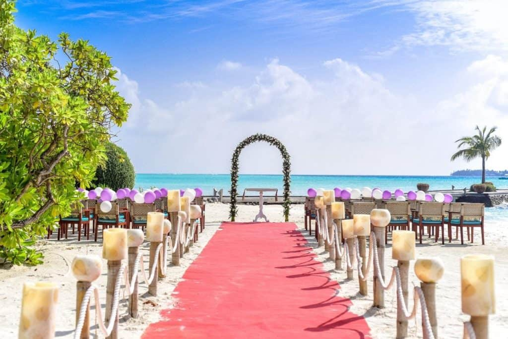 Image result for The wedding arch