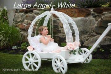 Wedding Deal from Mini Wedding Wagons